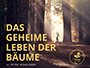 das_geheime_leben_der_baeume_news.jpg
