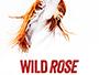wild_rose_news.jpg