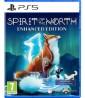 spirit_of_the_north_enhanced_edition_pegi_v2_ps5_klein.jpg