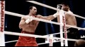 Klitschko (Majestic Collection)
