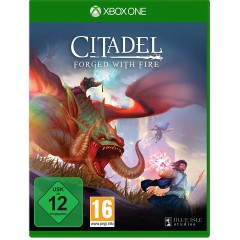 citadel_forged_with_fire_v1_xbox.jpg